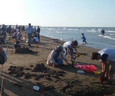 برگزاری جشنواره مجسمه های شنی به مناسبت روز دریای خزر